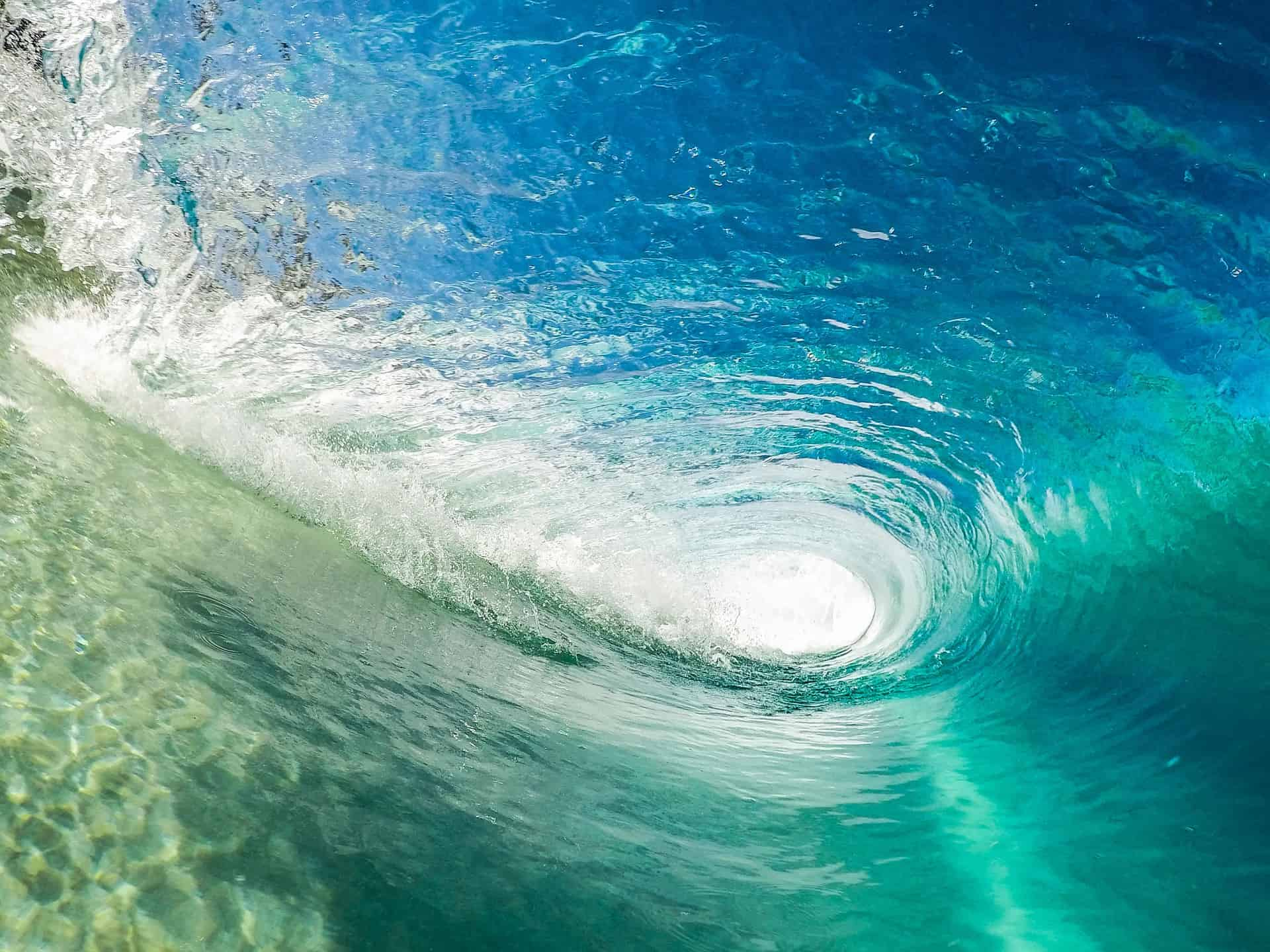 Surf Therapy Travel _ wave
